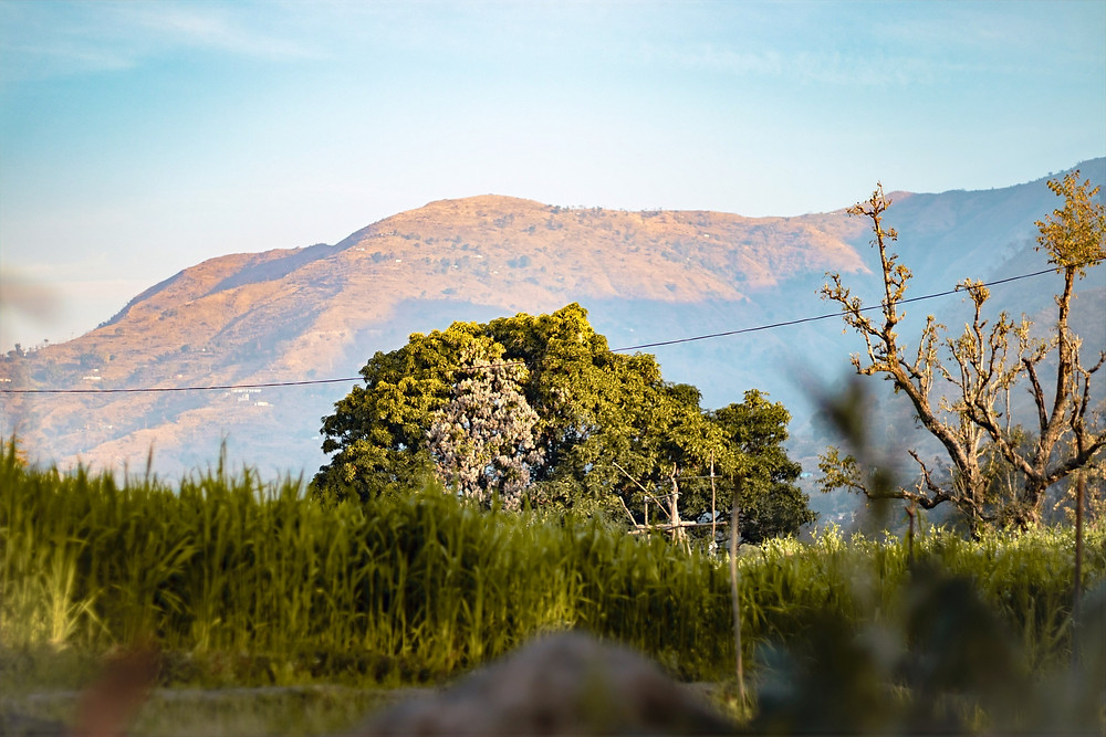 A beautiful view of mountains at Jim Corbett