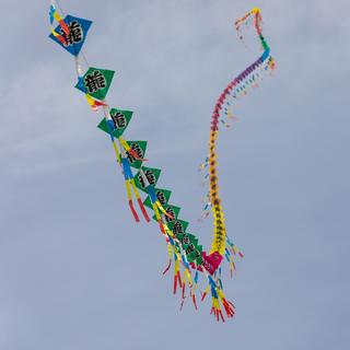 Long Kite.png