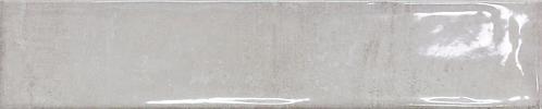 Clio Silver