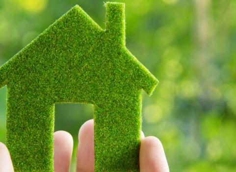 Green Home Scheme and Sash Window Doctor Ltd.