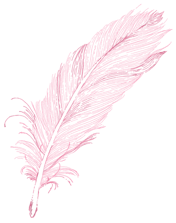 Feather_Vertical Pink.png
