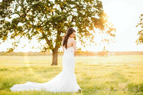 Classic Oaks Ranch Bridal Portraits_Swan