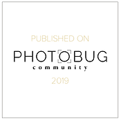 PhotobugBADGE.png