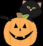black-cat-behind-jack-o-lantern.png