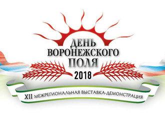 День Воронежского поля-2018