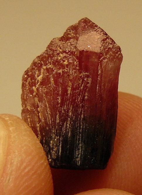 Tourmaline (variety Rubellite)
