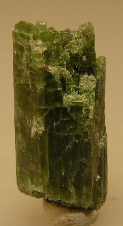 Tremolite (variety Chromium) and Philogopite