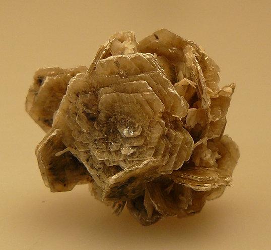 Polyliothinite
