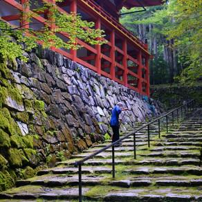 Sweeping at Enryaku-ji
