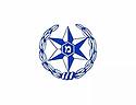 משטרת ישראל.webp