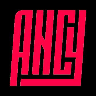 NAIS_COSTES_ancy-logo.png