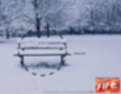 Bench.jpg.png