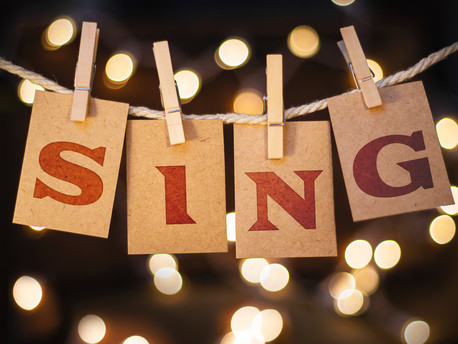 Stimmbildung & Gesang   Einzel & Gruppenunterricht persönlich oder on-line