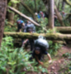 Hiker on the Nootka Trail