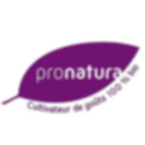logo-pronatura.jpg
