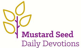 MustardSeedDev.PNG