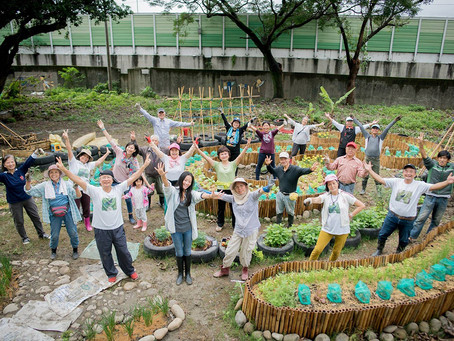 Edible Landscape - Happy Vegetable Farming in the City