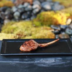 grilled lamb robata