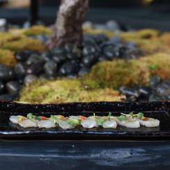 new style yellowtail sashimi