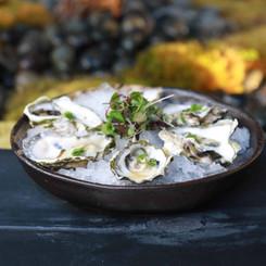 oysters in sherman oaks