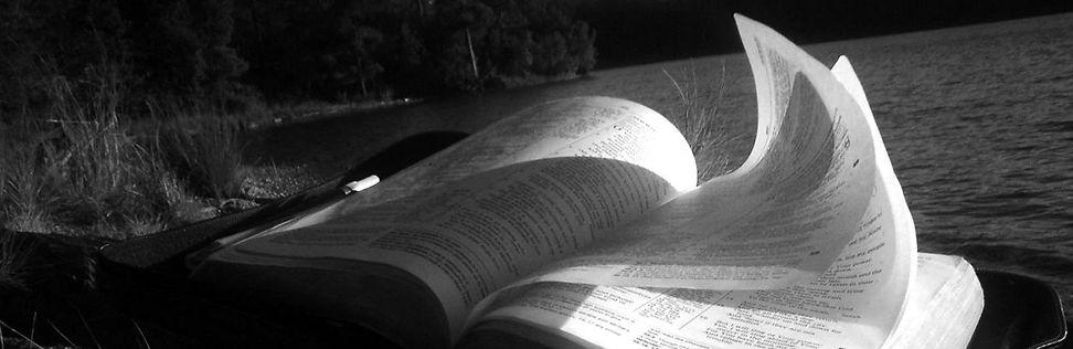 bible reading web inside banner 01-high.
