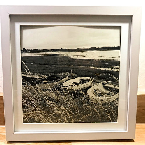 Thorney Island 'Grass Roots' Photography.