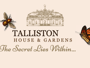 We're creating unforgettable celebrant events at Britain's Most Extraordinary Home, Talliston House.