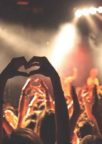 Los fans en concierto