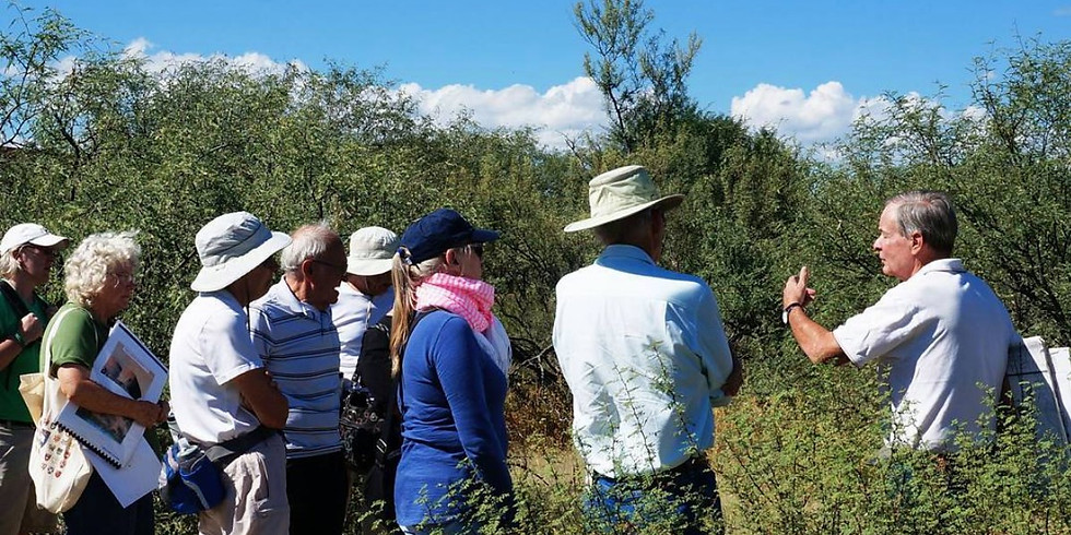 Guided Tour of the Barrio de Tubac Archaeological Site