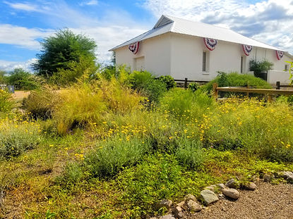 Otero Hall and Wildflowers Tubac Arizona Presidio