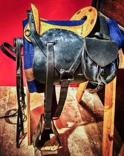 Saddle inside the Griffin Museum