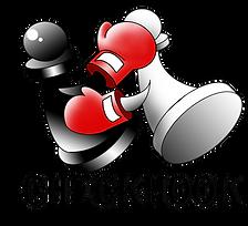 CheckHook logo.png
