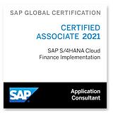SAP FIN IMP.png