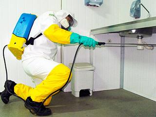 Controle de pragas em estabelecimentos que manipulam alimentos.