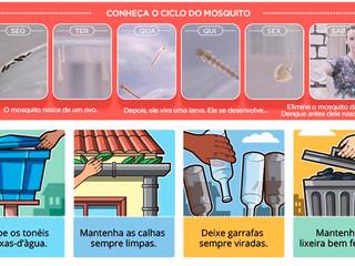 Governo estuda multa para quem mantiver focos de Aedes aegypti em casa
