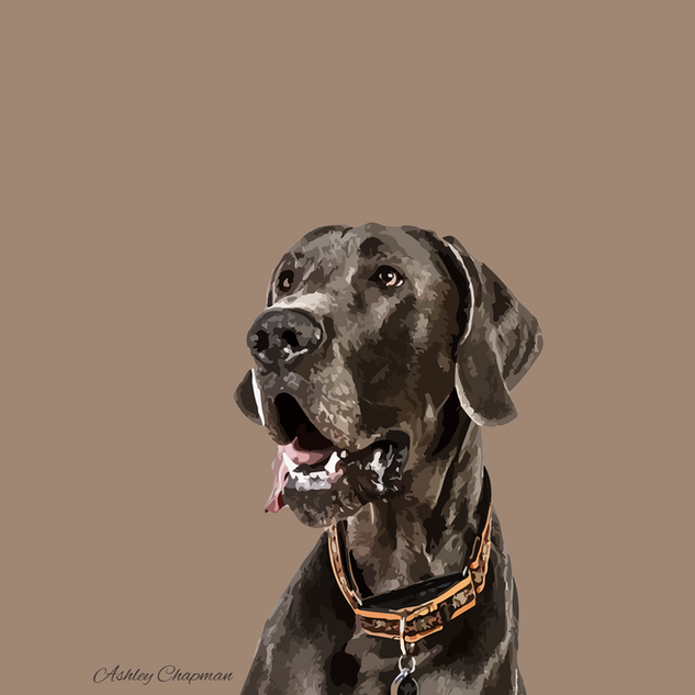Greatdane@3x.png