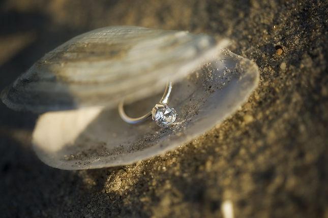 Wedding ring in the shell.jpg