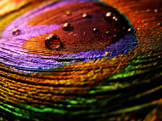 Colorful-Water-Drops-Wallpapers-25.jpeg