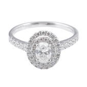 HER27 Halo Engagement Ring
