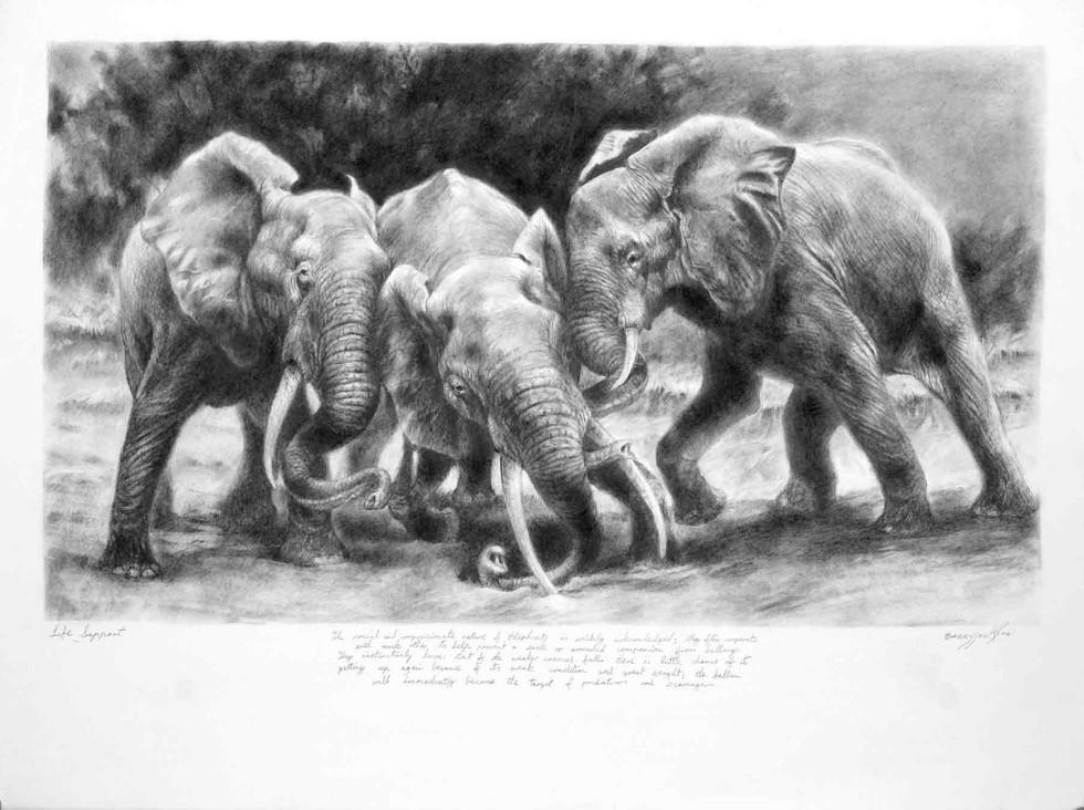 Elephants Life Support
