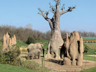 ZOO AFRICAN SAFARI Un zoo en perpétuel mouvement !