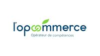 LOPCOMMERCE-Logo.jpg.webp