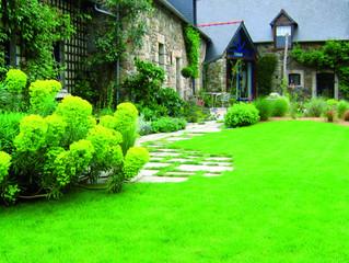 Daniel Paysage donne un sens à votre jardin