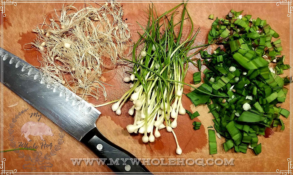 Chopped ramps, chives and roots.