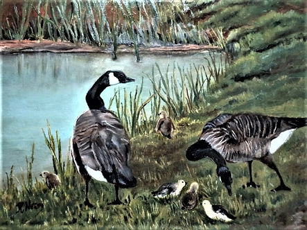 Geese .jpg