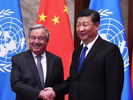 ONU quer informações sobre Tráfico de Órgãos na China