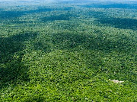 """CNJ promoveu evento de """"Proteção da Amazônia""""  com a União Europeia"""