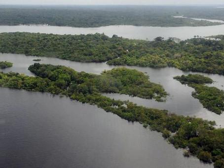 Operação Verde Brasil 2: Proteção do Gigante Verde