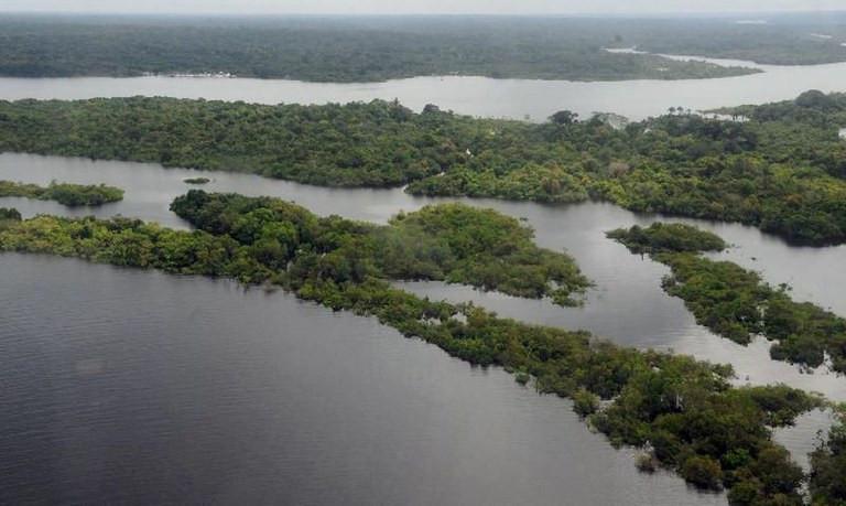 Combatendo e reprimindo os crimes ambientais na região, Operação Verde Brasil 2 já aplicou mais de R$ 520 milhões em multas. - Foto: Agência Brasil