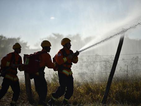 Mesmo com seca e calor recorde, incêndios florestais no DF caem 50%
